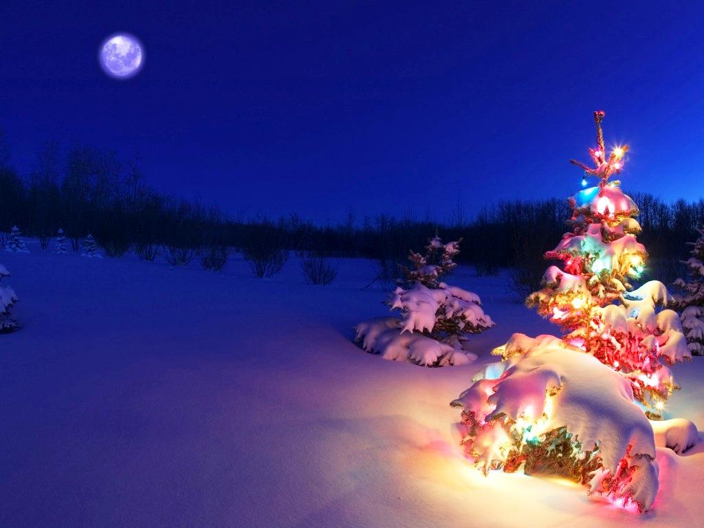 3D-Christmas-Desktop-Backgrounds-Christmas-Trees – AxeeTech